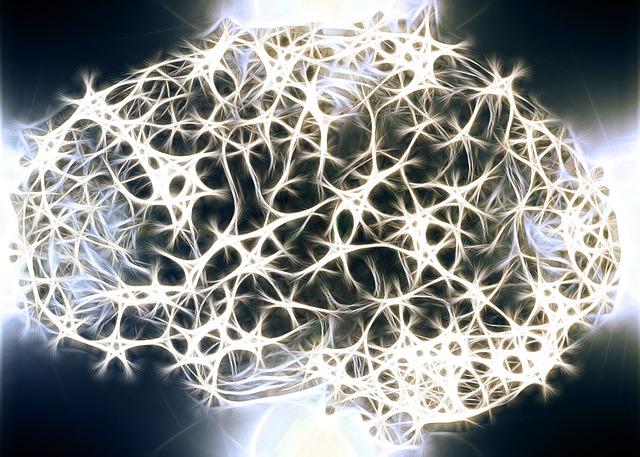 Che cosa rende uniche le cellule del cervello umano?