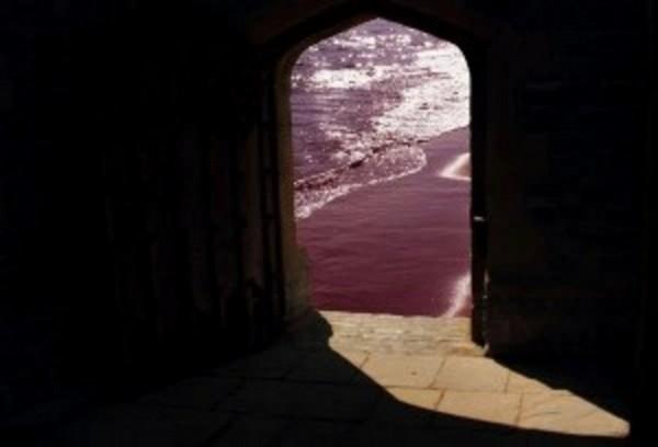 Fulvio Vignoli – La luce alla base della Coscienza e forse della Creazione stessa?
