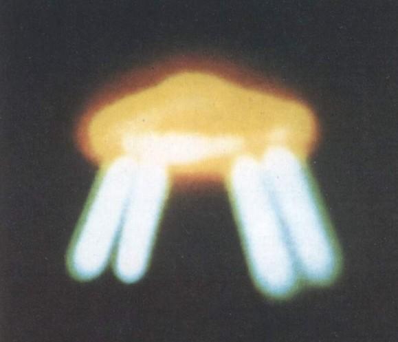 UFO nel passato: immagini e testimonianze di oltre 3000 anni di contatti di Umberto Telarico - Parte terza 10