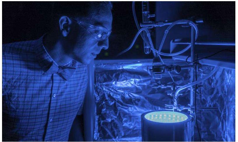 Inventato metodo per innescare fotosintesi artificiale per pulire l'aria