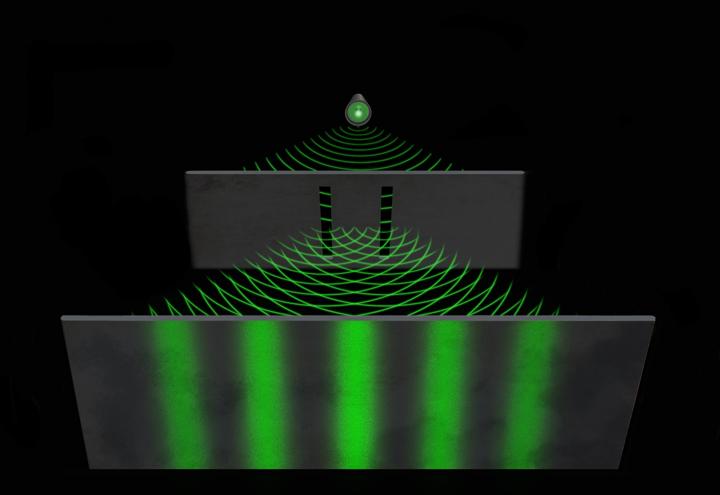 La particella interagisce con il suo Campo Ondulatorio!