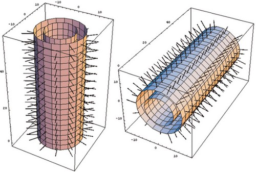 Risonanza morfica e biologia quantistica 3
