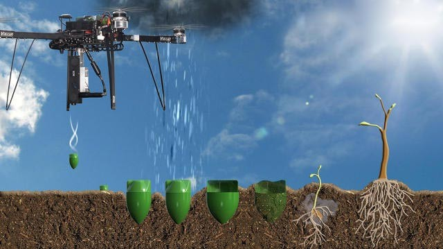 I droni semina-alberi rimboschiranno le zone desertificate al ritmo di 10.000 piante al giorno 3