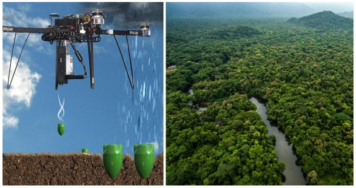 I droni semina-alberi rimboschiranno le zone desertificate al ritmo di 10.000 piante al giorno 1