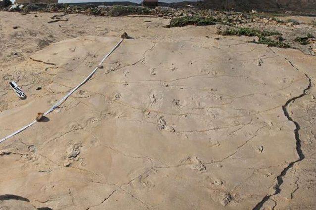 L'hominino trovato a Creta potrebbe ribaltare la storia dell'evoluzione umana