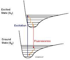 Biologia quantica e biofononi 5