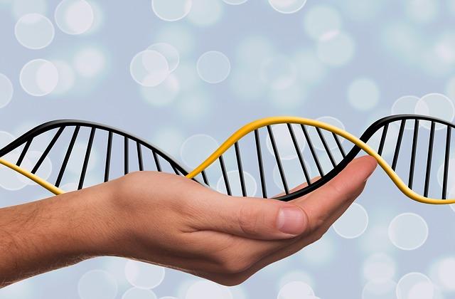 Il DNA può tramandare ricordi di stress traumatico alle generazioni successive
