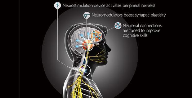 Medicina bioelettronica: decodificati i segnali del sistema immunitario
