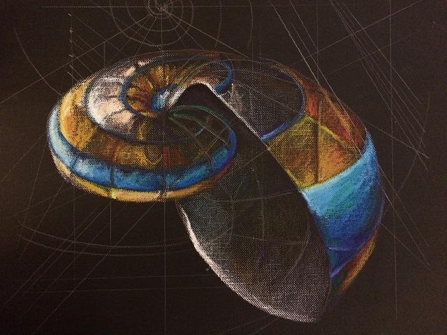 Connessioni tra la matematica di Ramanujan ed alcuni settori della Fisica e della Cosmologia