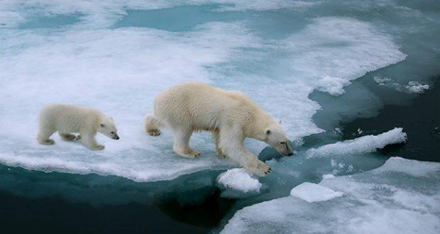 Cosa c'è veramente dietro la balla del Riscaldamento Globale