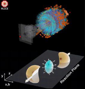 quark e gluoni