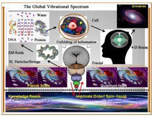 Processi della Scienza e dell'Arte modellati come Oloflusso di Informazione attraverso la geometria toroidale 5
