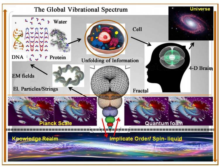 Processi della Scienza e dell'Arte modellati come Oloflusso di Informazione attraverso la geometria toroidale 1