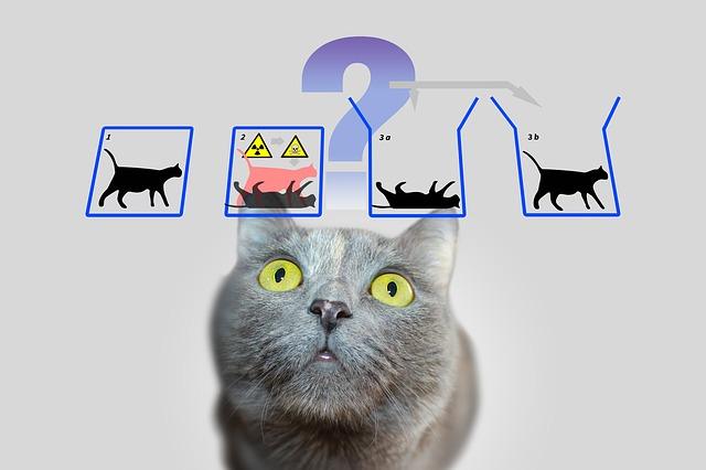 Gatto di Schrödinger – Proviamo a venirne fuori