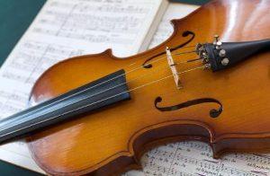 Le onde cerebrali dirigono l'orchestra dei neuroni? 1