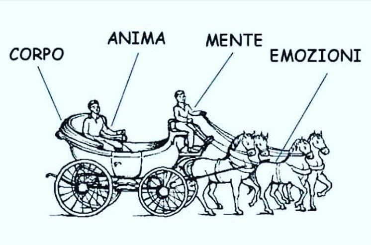 La metafora della carrozza Di Gurdjieff: corpo, mente, emozioni e anima