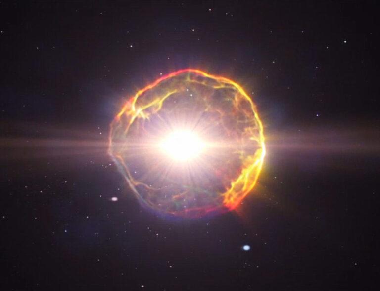 Le supernove che ci hanno alzato in piedi