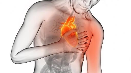 Un batterio intestinale potrebbe contribuire all'infarto