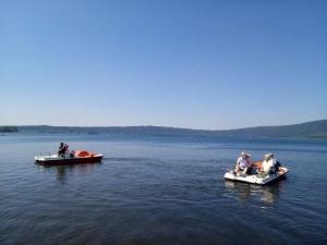 Modificazione significativa del ph del Lago di Vico da remoto 1