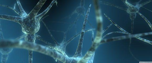 Una nuova tecnica per riparare i nervi danneggiati